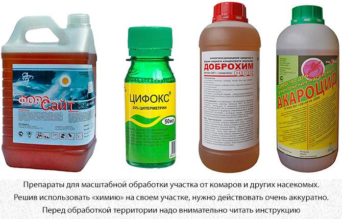 Химические препараты для дезинсекции от насекомых