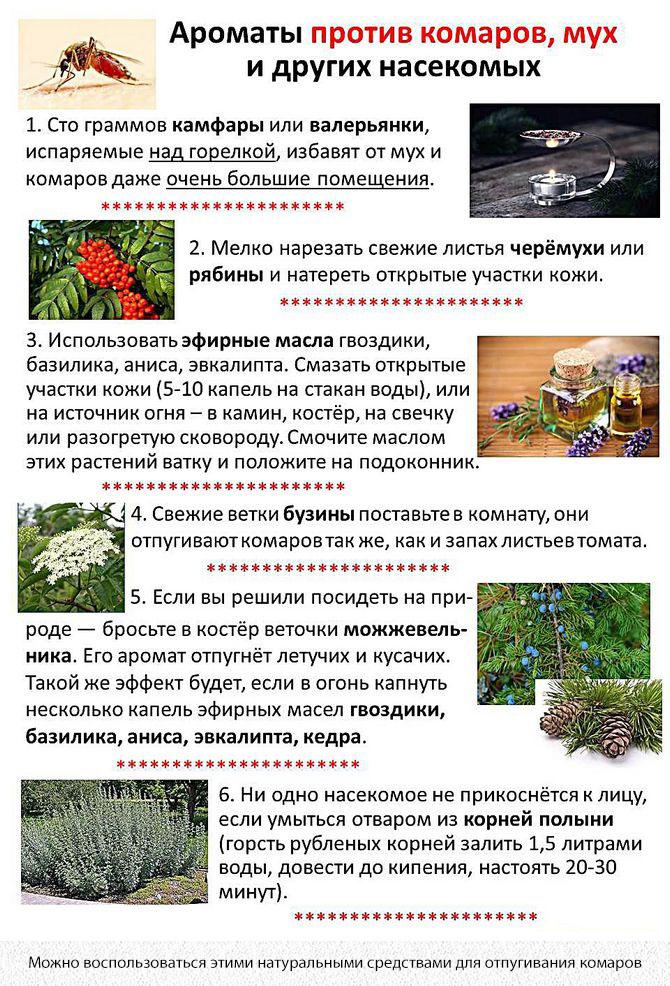 Ароматы против комаров и мух