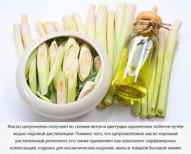 Цитронелловое масло