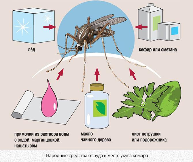 Народные средства от комариных укусов
