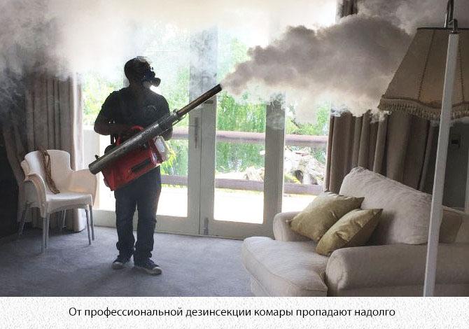 Дезинсекция квартиры от комаров