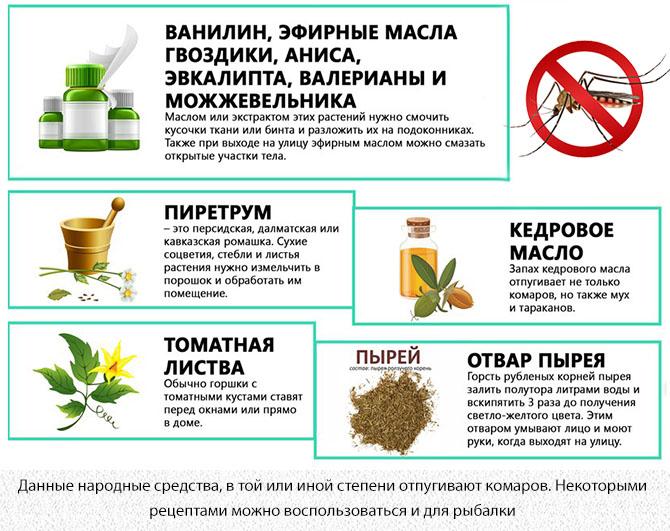 Народные средства и растения которых боятся комары