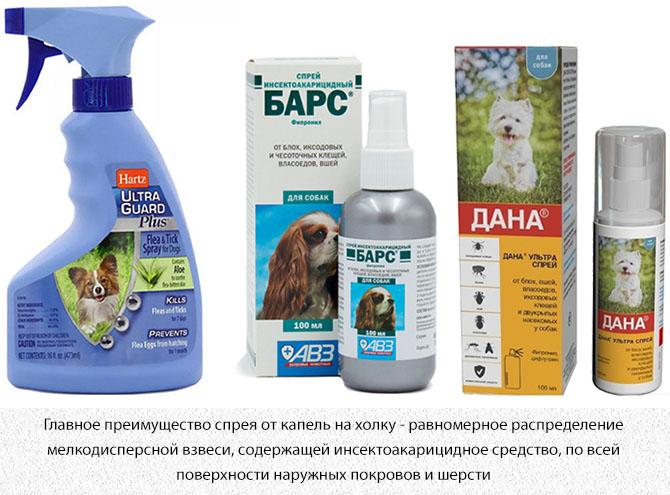 Спреи для собак от комаров и паразитов