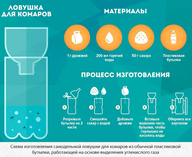 Самодельная ловушка для комаров из пластиковой бутылки