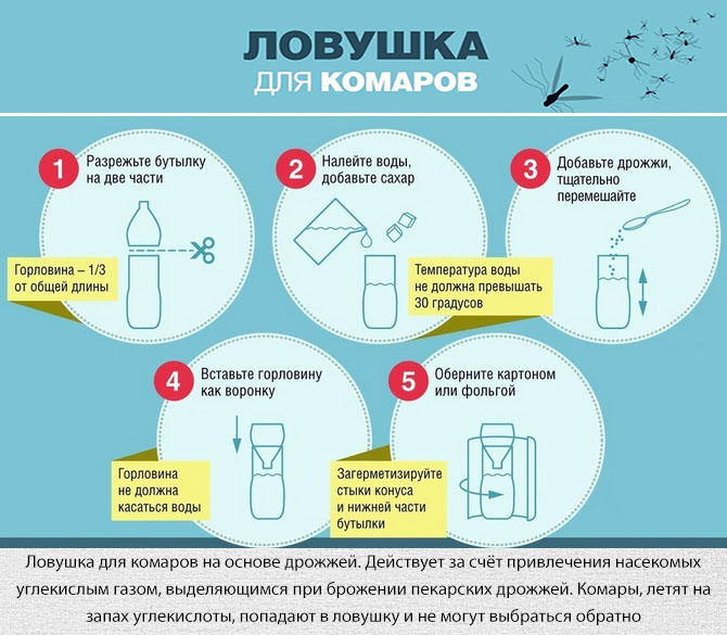 Изготовление ловушки от комаров из пластиковой бутылки