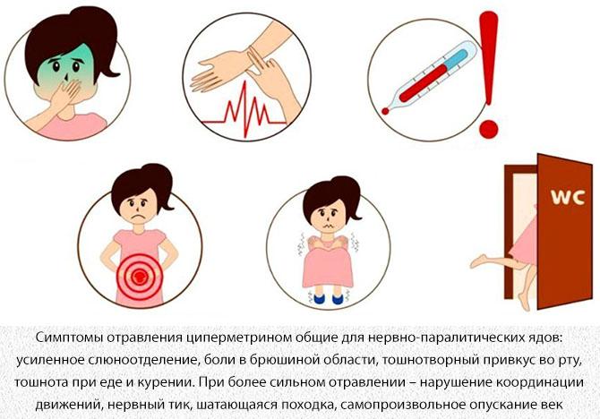 Симптомы отравления циперметрином